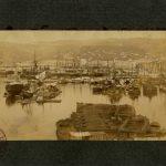 50. Francesco Benque, Porto di Trieste, [1898-1901] F373