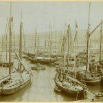 Arturo Cuzzi, Molo san Carlo. Bacino Carciotti : 16 aprile 1893 F10771