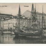 25. Riva del sale, [1910] F26016